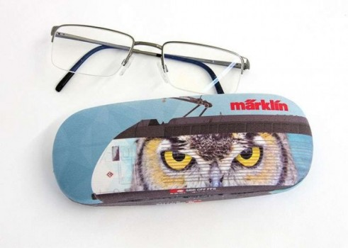 Spectacle case with cleaning cloth